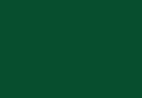 Sports Trip Logo